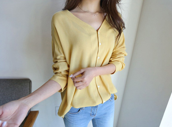 V-neck Blouse (20% OFF)